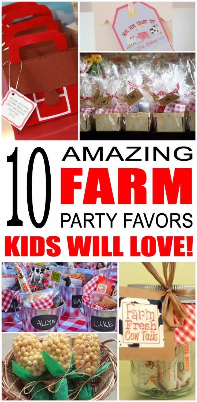 Farm Party Decoration Ideas - drive.cheapusedmotorhome.info
