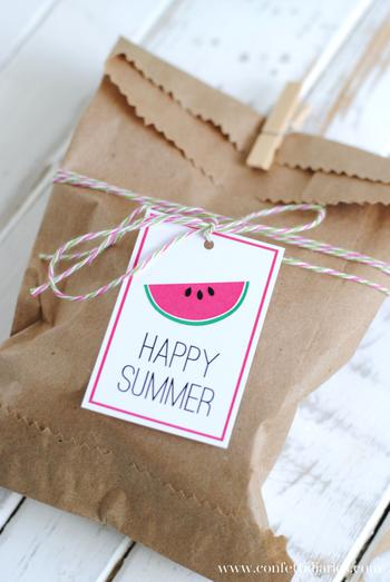 Summer Watermelon Party Favor